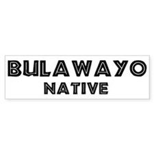 Bulawayo Native Bumper Car Sticker
