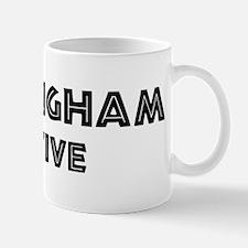 Birmingham Native Small Small Mug
