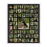 Pawprints Fleece Blankets