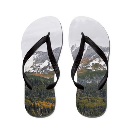 fall snow flip flops by redtruckphotos. Black Bedroom Furniture Sets. Home Design Ideas