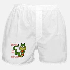 Year of the Dragon Cartoon Boxer Shorts