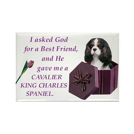 God Gave Me A Cavalier King Charles Rectangle Magn