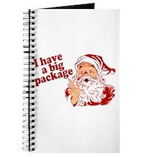 Santa Has a Big Package Journal