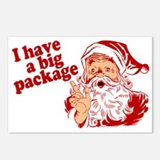 Santa Has a Big Package Postcards (Package of 8)