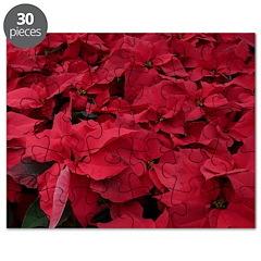 Poinsettia Puzzle