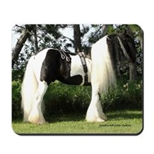 Gypsy Vanner Stallion in full tack Mousepad