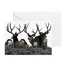Monster buck deer Greeting Cards (Pk of 20)