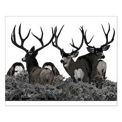 Monster buck deer Posters