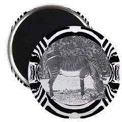 """Zebra in print 2.25"""" Magnet (10 pack)"""