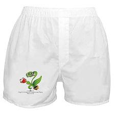 Orgel's Orchids Boxer Shorts