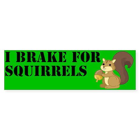 Bumper Sticker - Squirrels