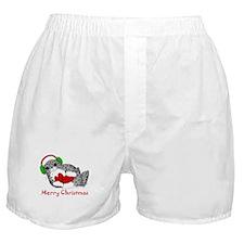 Christmas Seal Boxer Shorts