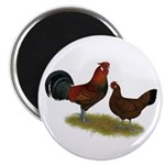 Old English Pheasant Fowl Magnet
