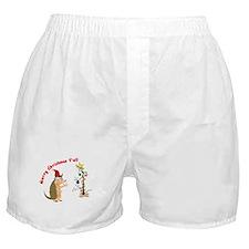 Armadillo Christmas Boxer Shorts