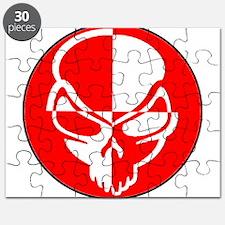 Skull Test Puzzle