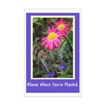 Bloom Where You're Planted Mini Poster Print