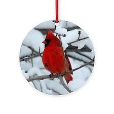 Snow Cardinal Ornament (Round)