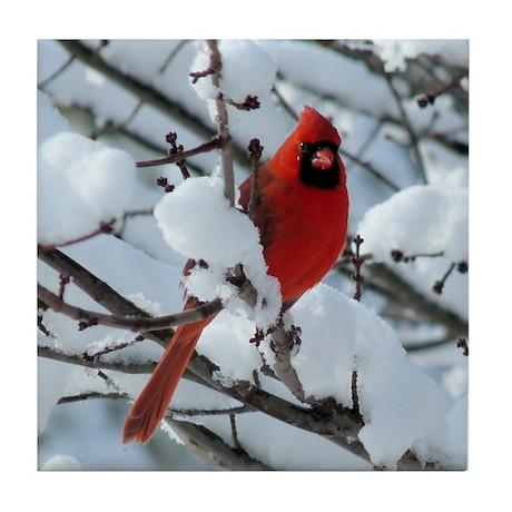 Snow Cardinal Tile Coaster