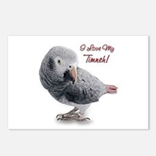 African Grey Parrot Holiday Postcards (Package of