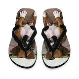 Dogs Flip Flops
