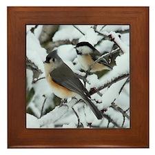 Tufted Titmouse & Chickadee Framed Tile