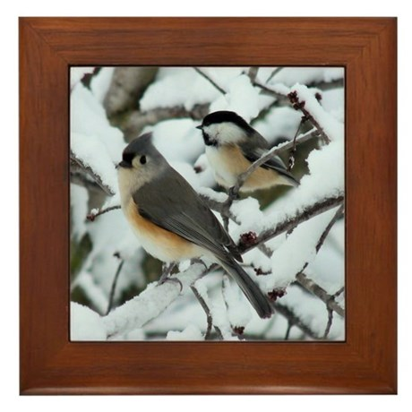 Tufted Titmouse & Chickadee Framed Tile