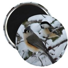 Tufted Titmouse & Chickadee Magnet