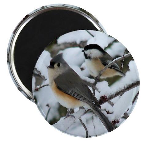 Tufted Titmouse & Chickadee Magnet