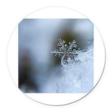 Snowflake 23 Thermos®  Bottle (12oz)