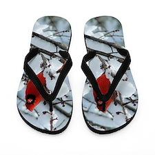Snow Cardinal Flip Flops