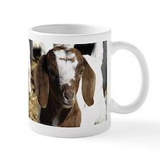 Boer Kid Goat Mug
