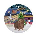 Xmas Magic - Brown Guinea Pig