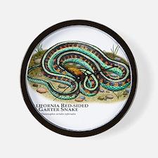 California Red-Sided Garter Snake Wall Clock