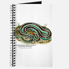 California Red-Sided Garter Snake Journal