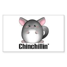 Cute Chinchilla Decal