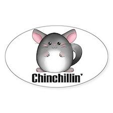 chinchillin Decal