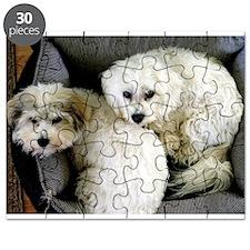 Coton De Tulear Puzzle