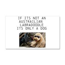 Car Magnet 20 x 12-Australian Labradoodle