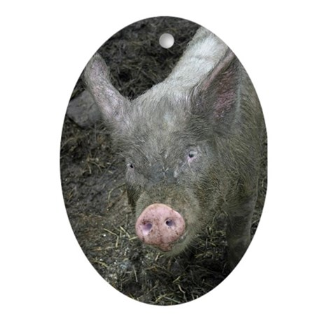 Pig Ornament (Oval)