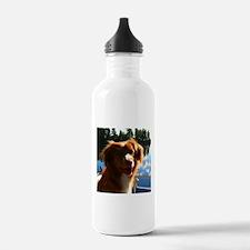 Duck Tollers Water Bottle