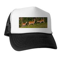 White Tail Deer Buck Hats Trucker Hat