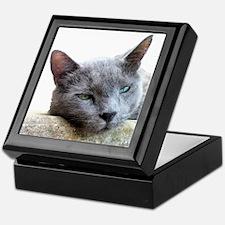 Grey Cat Face Keepsake Box