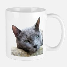 Grey Cat Face Mug