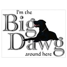 Big Dawg Poster
