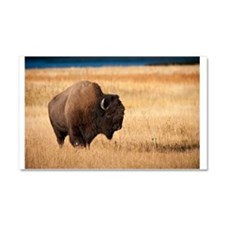 Cute Bison Car Magnet 20 x 12