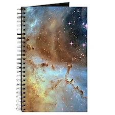 Rosette Journal