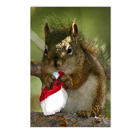 Squirrel Christmas Postcards (Package of 8)