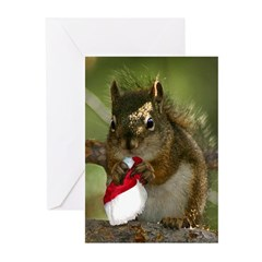 Squirrel Christmas Greeting Cards (Pk of 10)