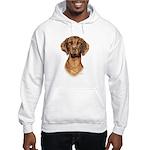 Hungarian Vizsla Hooded Sweatshirt