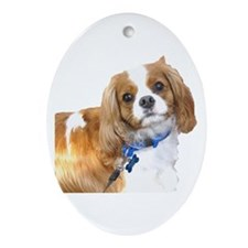 Toby Ornament (Oval)